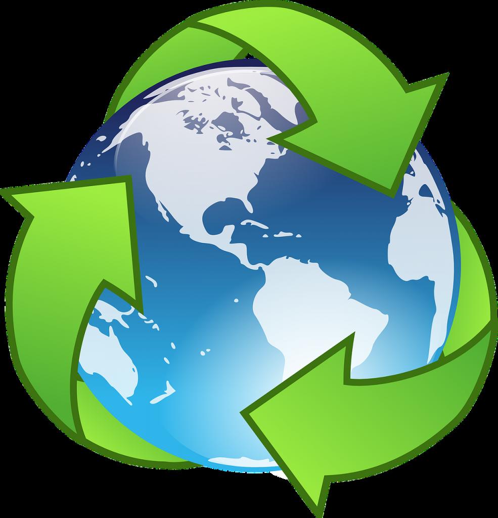 הפרדת פסולת ואיכות הסביבה- אילו פתרונות אקולוגיים קיימים לעסקים